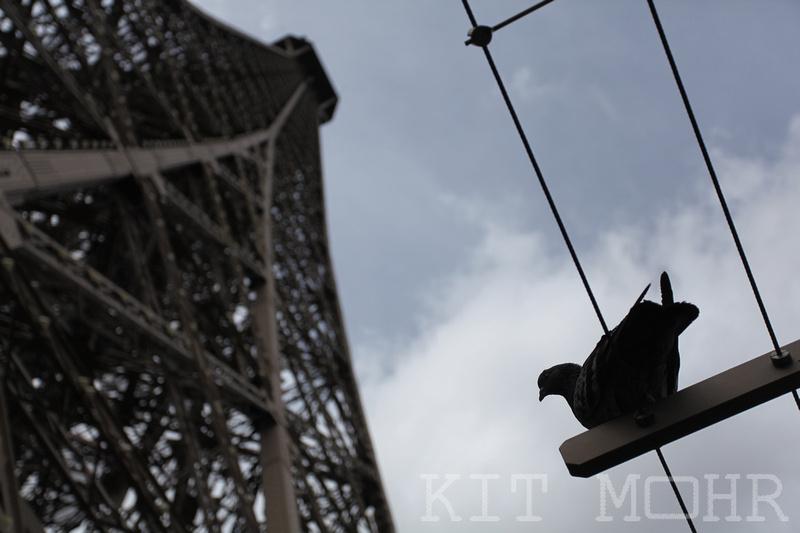 Sous_Le_Tour_Eiffel